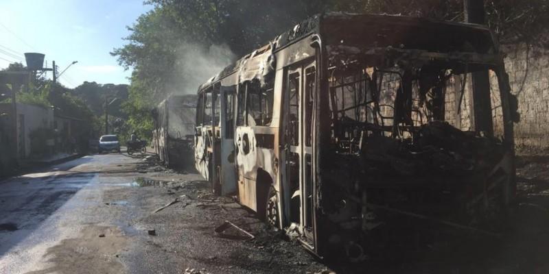 Secretaria apura denúncias de ataques em outras cidades amazonenses