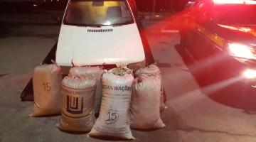 Homens são presos com 105 kg de maconha em São Caetano