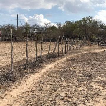 Maioria das cidades de Pernambuco estão em situação de emergência devido à estiagem