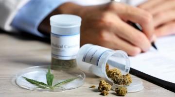 Anvisa libera comercialização de produtos a base de cannabis em farmácias do Brasil