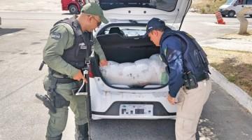 Casal é detido com 15 kg de maconha em São Caetano