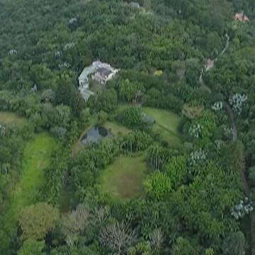Consema debate melhorias na resolução de licenciamento ambiental para municípios