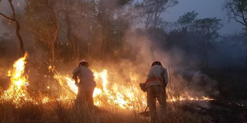 O Pantanal vem sofrendo com a degradação das suas reservas naturais