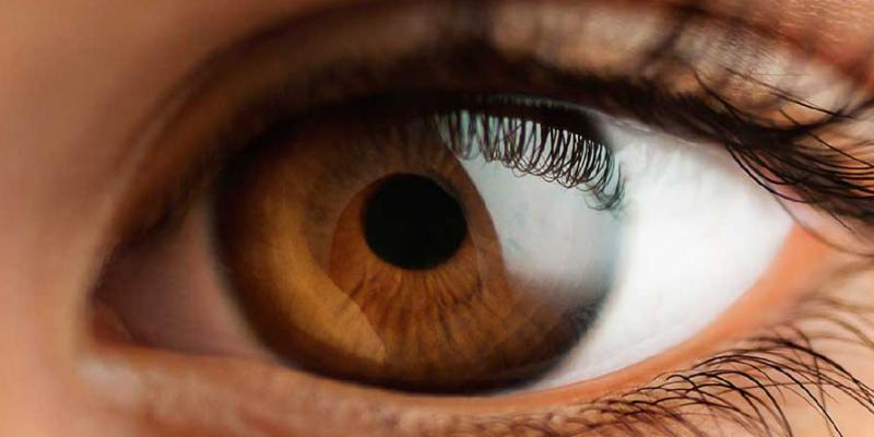 Segundo a OMS há uma estimativa de que 60% das cegueiras são evitáveis