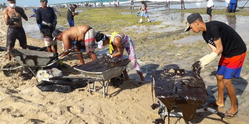 Só no último sábado (19), trinta toneladas do material foram coletados pelos órgãos do governo e voluntários