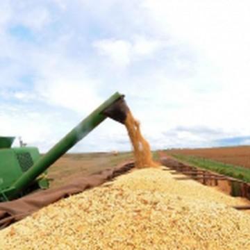 IBGE prevê safra recorde de 258,5 milhões de toneladas em 2021