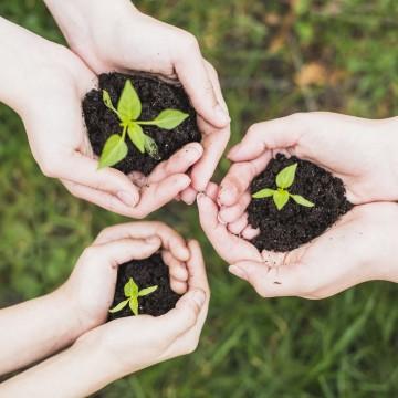 CBN Sustentabilidade: Dia Nacional da Educação Ambiental