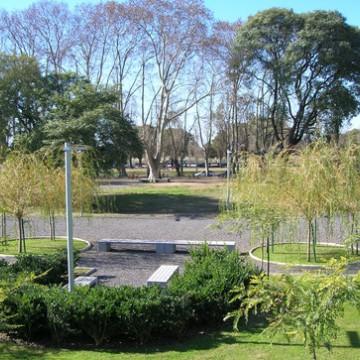 Entenda a importância das áreas verdes para as cidades