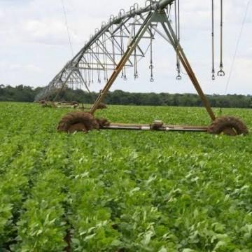 Irrigação gera impacto positivo no estado, afirma presidente do Sindaçúcar-PE