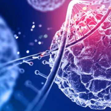 Revisando CBN: Biologia 08/09/2020