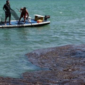 Comercialização de pescados segue comprometida por causa do óleo nas águas