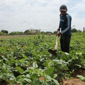 Exército deve efetuar compra de mais de R$300 mil em alimentos e beneficiar a agricultura familiar